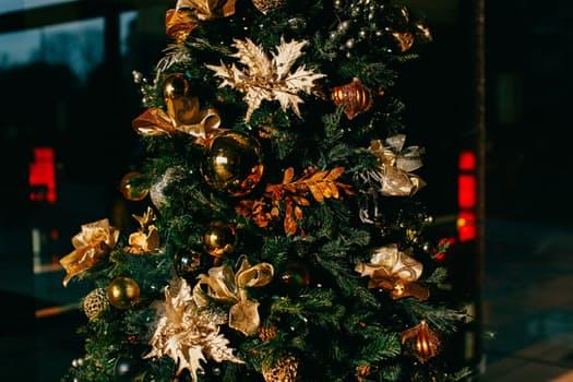 Christmas Backdrops for photography